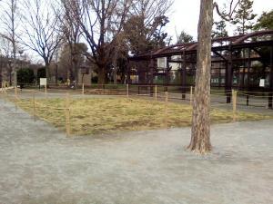 3月23日の中庭