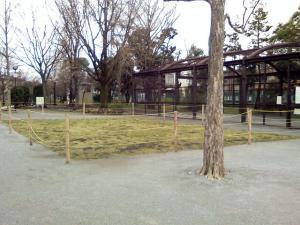 3月26日の中庭