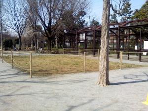 3月27日の中庭