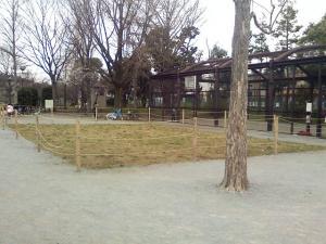 3月28日の中庭