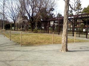 3月29日の中庭