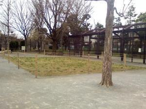 4月2日の中庭