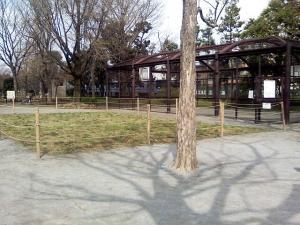 4月3日の中庭
