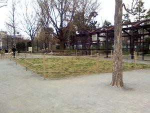 4月4日の中庭