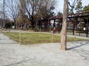 4月6日の中庭
