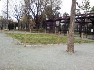 4月7日の中庭