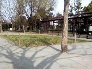 4月9日の中庭