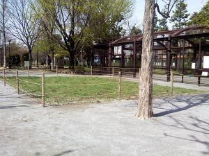 4月13日の中庭