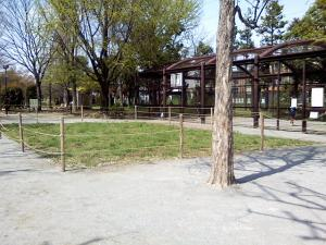 4月14日の中庭