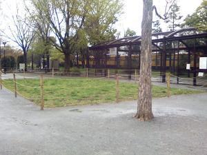 4月15日の中庭