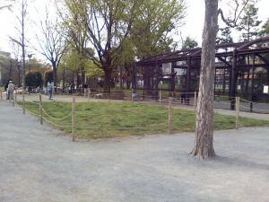 4月18日の中庭