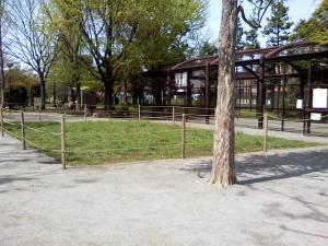 4月21日の中庭
