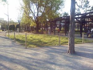 4月25日の中庭