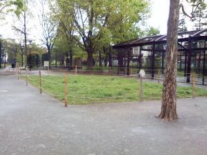 4月27日の中庭
