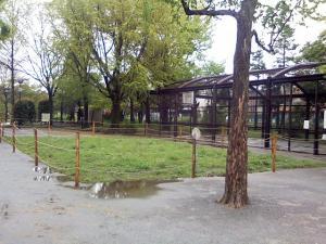 4月28日の中庭