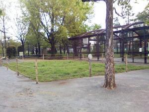 4月29日の中庭