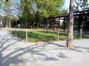 4月30日の中庭