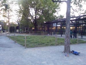 5月2日の中庭