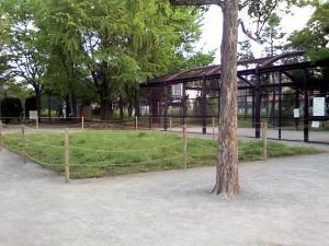 5月6日の中庭