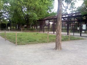5月7日の中庭