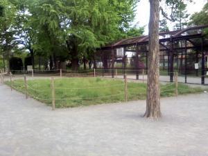 5月10日の中庭
