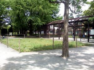5月16日の中庭
