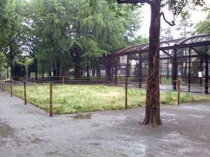 5月20日の中庭