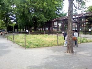 5月22日の中庭