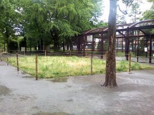 5月23日の中庭