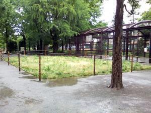5月24日の中庭