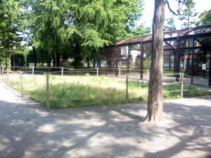 5月25日の中庭