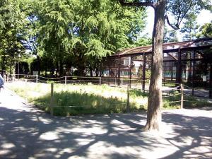 5月28日の中庭