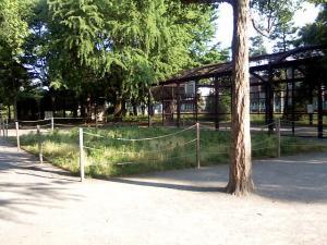 2010年5月31日の中庭