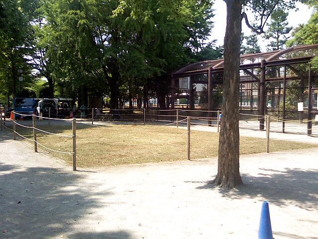 6月5日の中庭