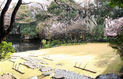 浮月桜-3