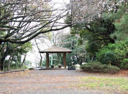 清水山公園・谷津山-5