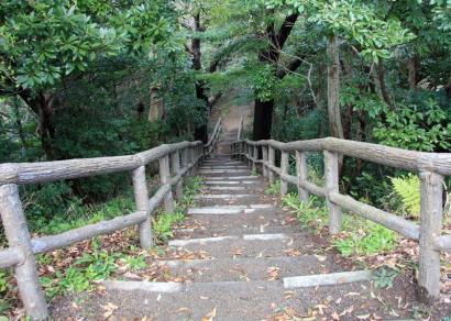 清水山公園・谷津山-6