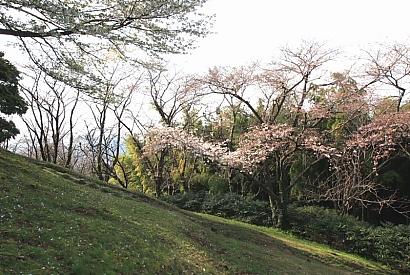 清水山公園・谷津山-10