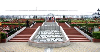 島田市ばらの丘公園-11