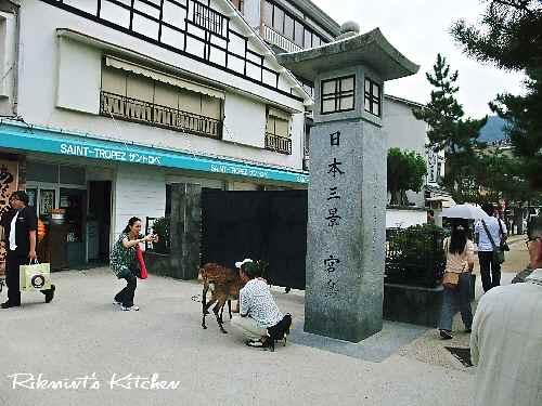 DSCF9・13日本3景
