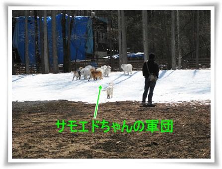 2011-327-5.jpg