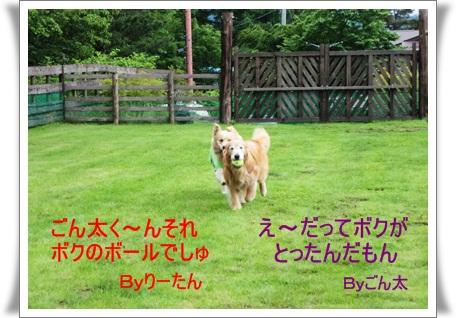 2011-6-19-6.jpg