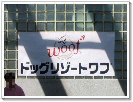 3連休Woofラン-1