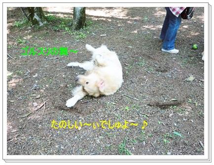 3連休Woofラン-11