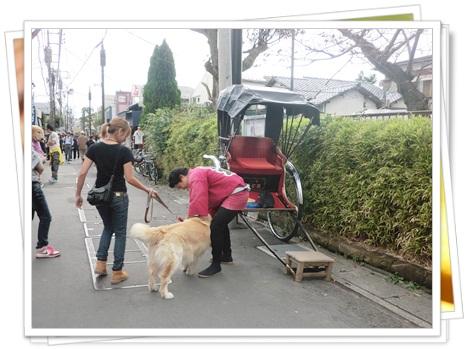 10月6日鎌倉-10