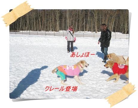 雪のわふ10