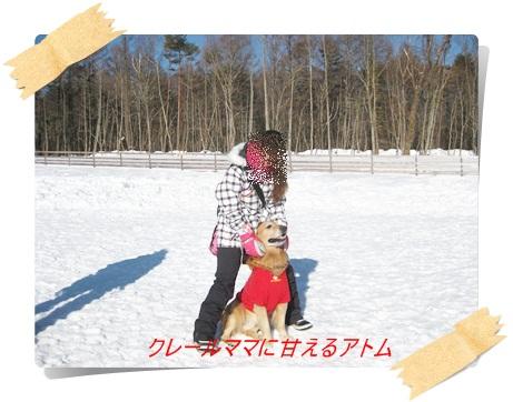 雪のわふ11