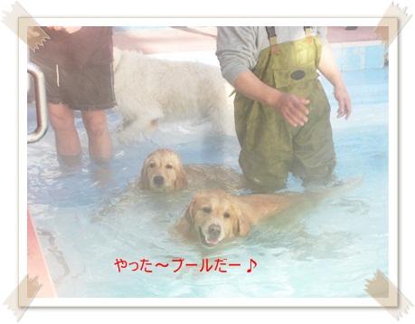 もやのプール2