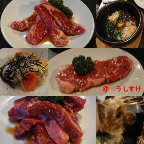 ushisuke2.jpg