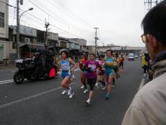 0221yojyosim-3.jpg